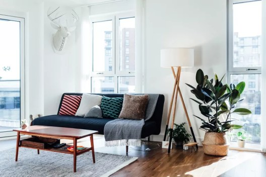 Furniture in white living room