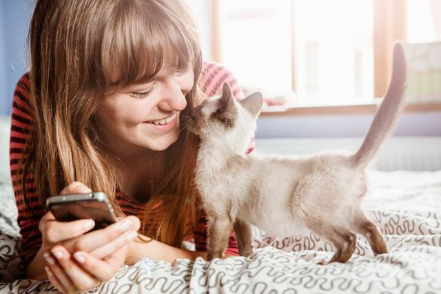 Young woman with phone gets cuddles from kitten