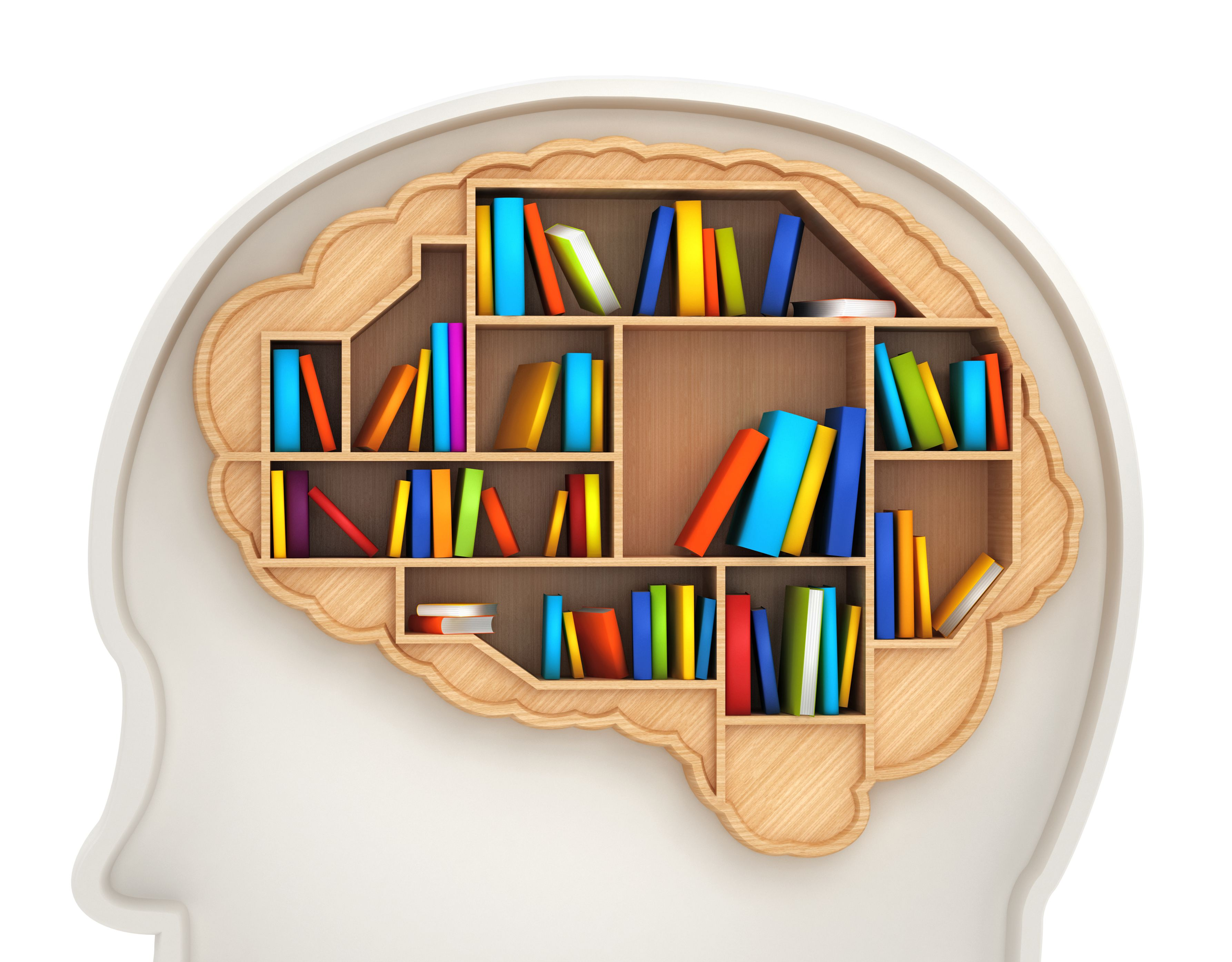 Long Term Memory Types Duration And Capacity