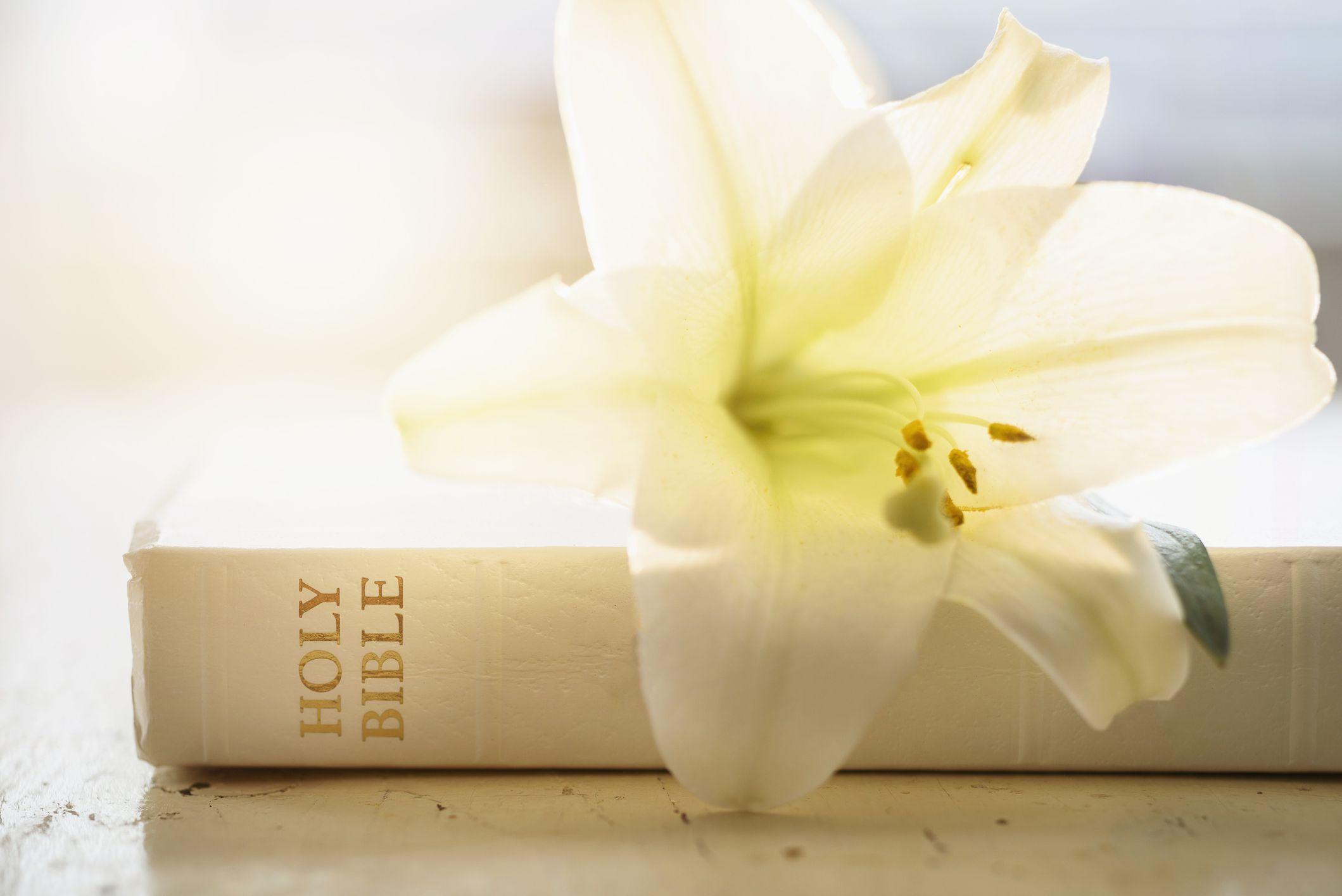Easter Bible Verses For Celebrating Resurrection Day