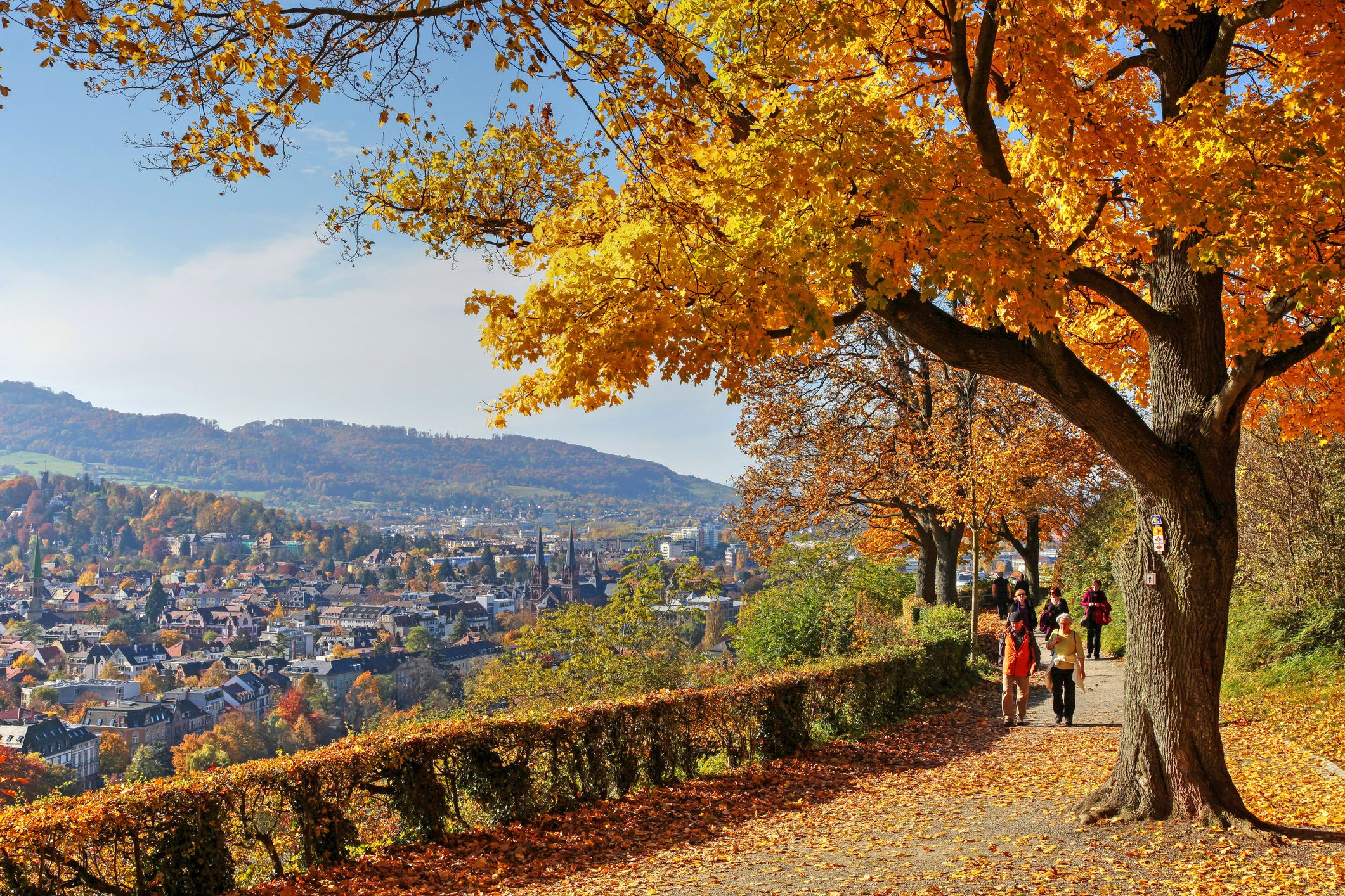 Best Sites For Autumn Leaves In Germany