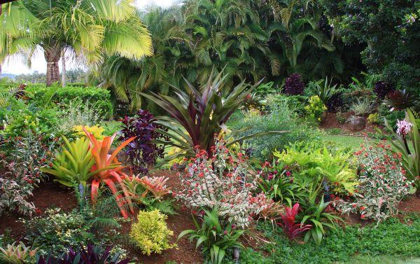 tropical garden design Tropical Flower Garden Design Ideas