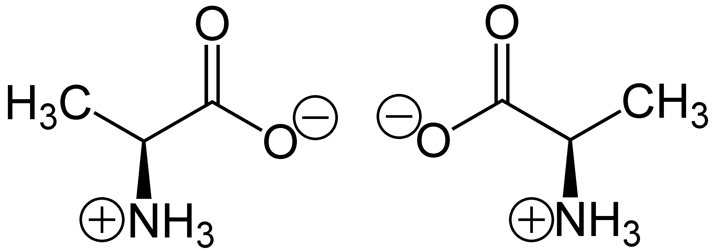 How Amino Acid Chirality Works