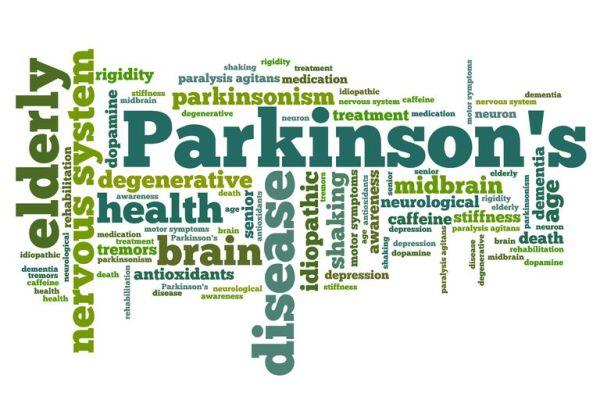 The Basics of Parkinson's Disease