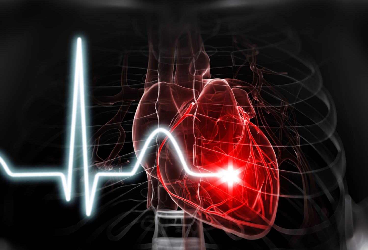 10 Fascinating Facts About Your Heart