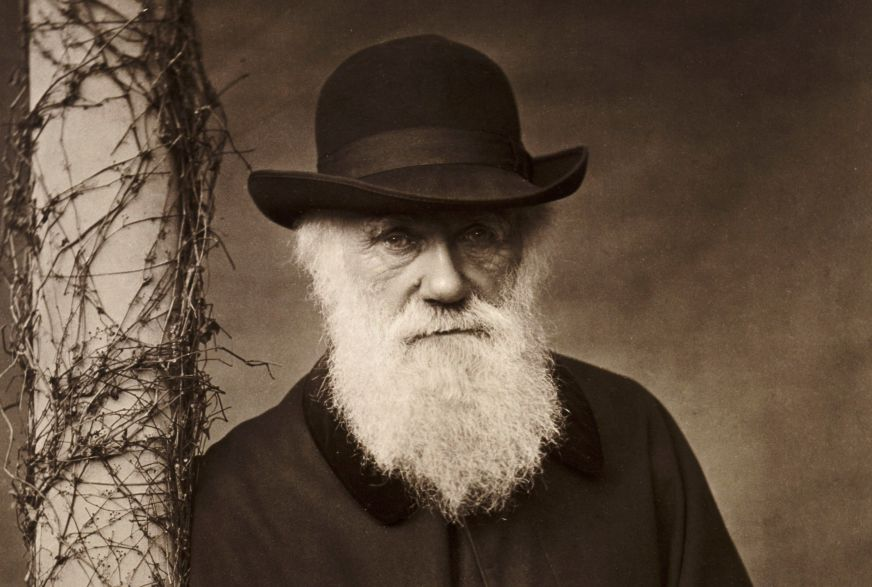 Charles Darwin | Author of On the Origin of Species
