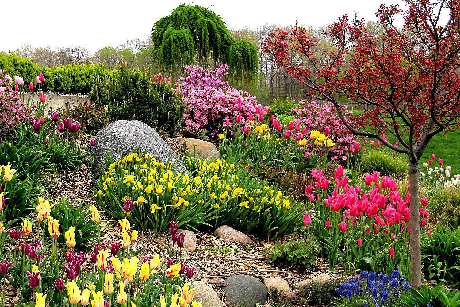 Colors That Attract Birds - Bird-Friendly Landscaping on Birds Backyard Landscapes  id=26960