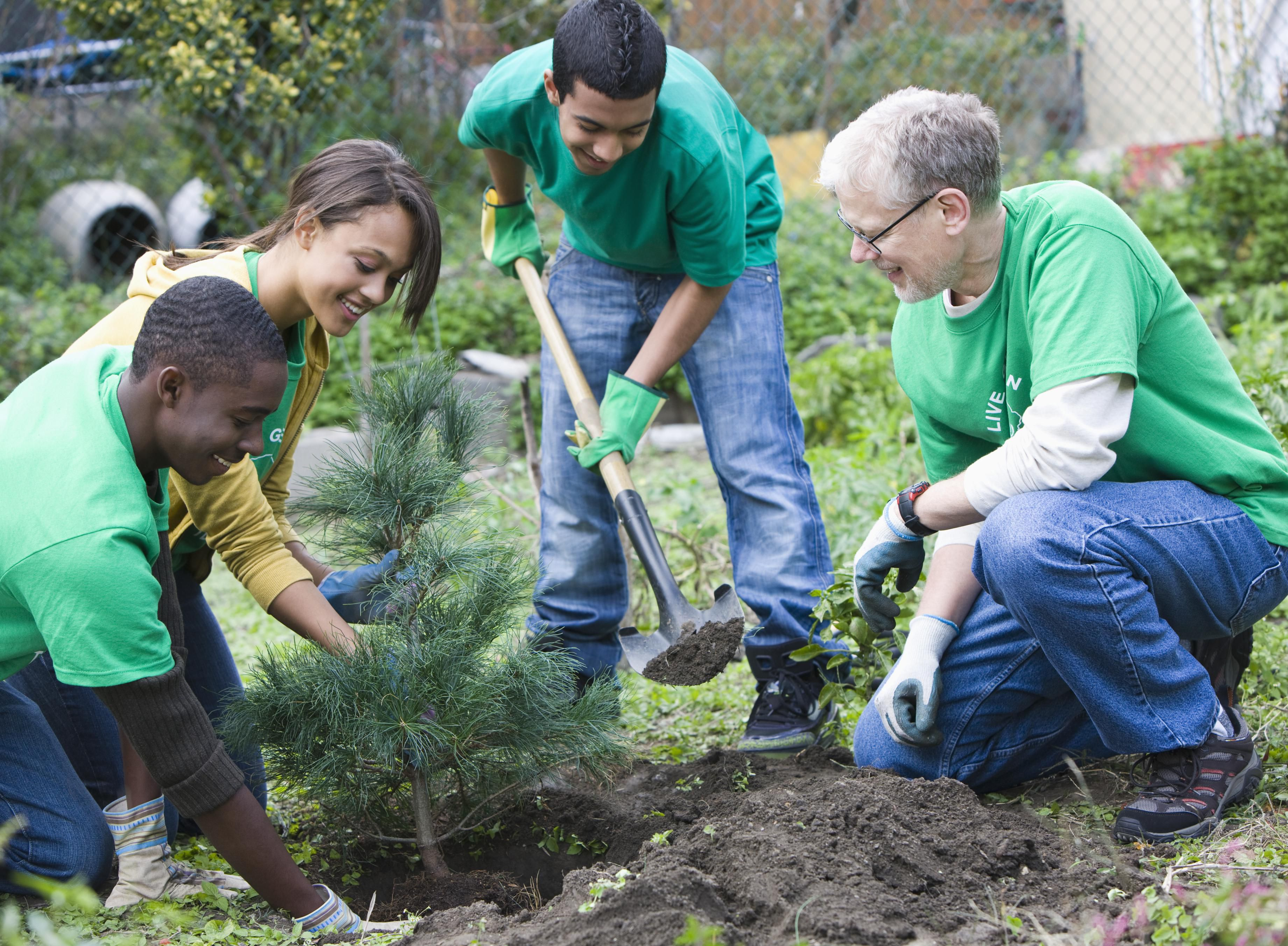 Great Ideas For Filling Your Community Service Hours