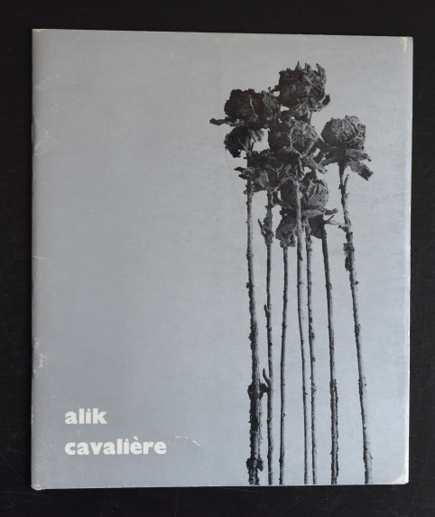 cavaliere a