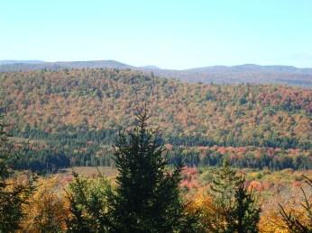 Scenic Vista 2