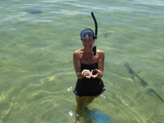 Snorkeling in Port St. Joe Florida via @FieldTripswSue