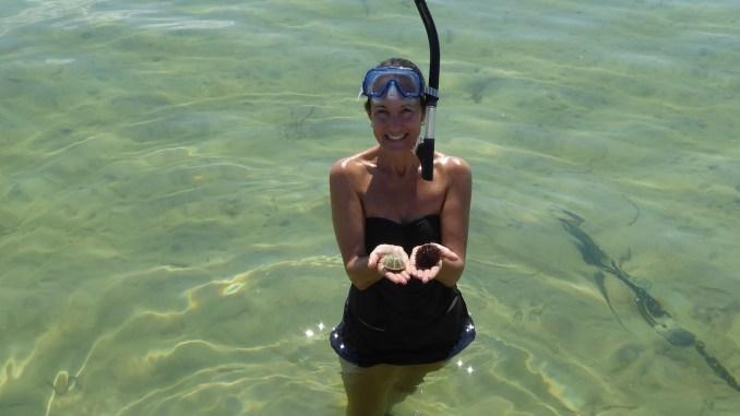 Snorkeling in Port St. Joe Florida via @FieldTripswSue