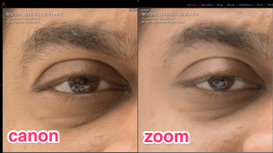 Canon full frame prime vs Sony APS-C zoom