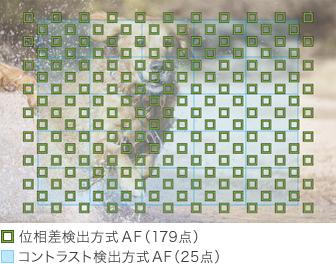 original_a6000_fasthybridAF_179