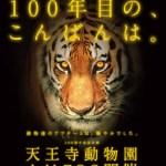 【期間限定】今話題!大阪天王寺動物園 ナイトZOO(ナイトズー)8月16日まで