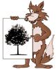 Logo - Zierpflanzen