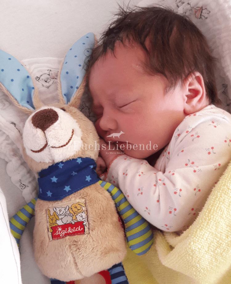 Geburtsbericht der Füchsin – Teil 1