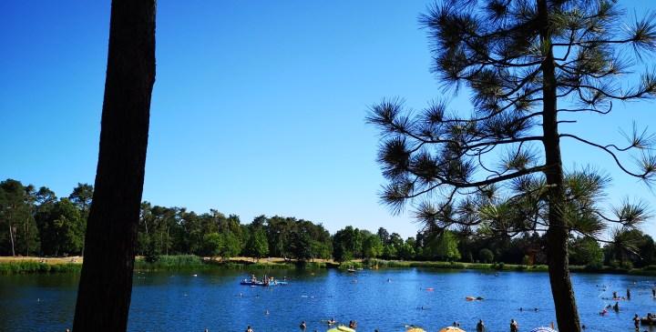 Ausblick über den See - Copyright: FUchsLiebende