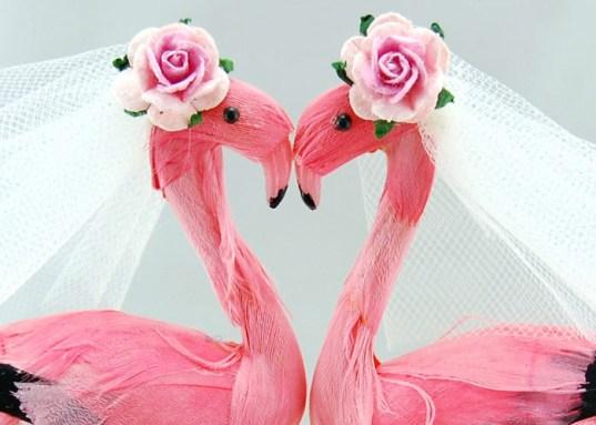 flamingobrides