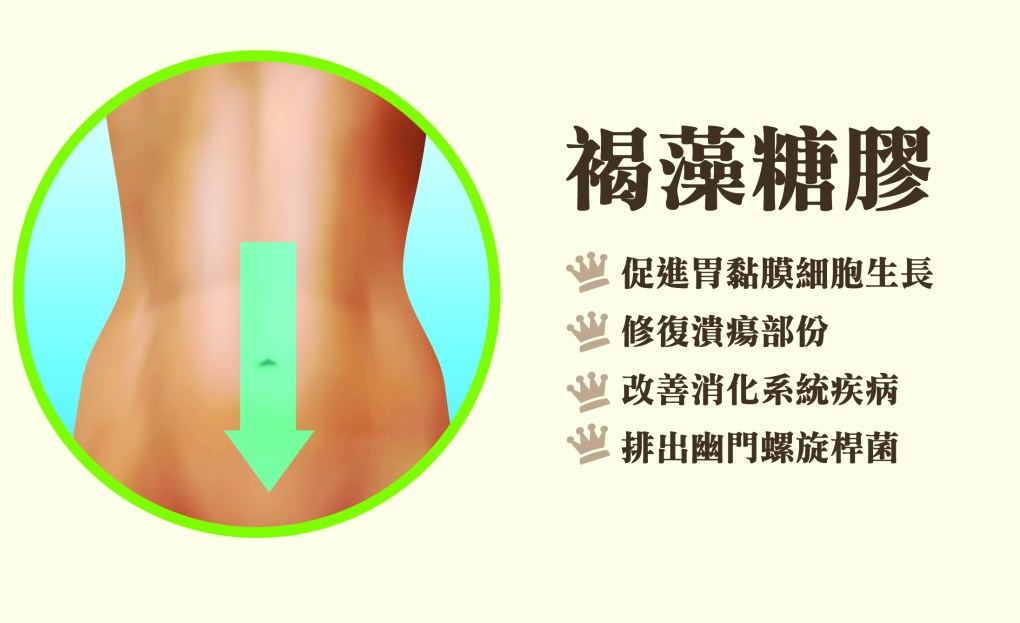 Fucoidan and stomach disease_01