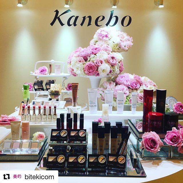 #Kanebo 2018 S/S