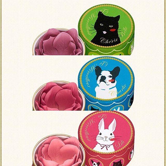 #laduree mini blush 3840 yen