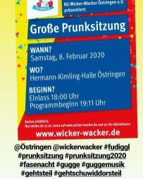 2020-02-08 Prunksitzungen Östringen + Hambrücken 01