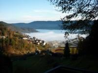 Bermersbach im Nebel