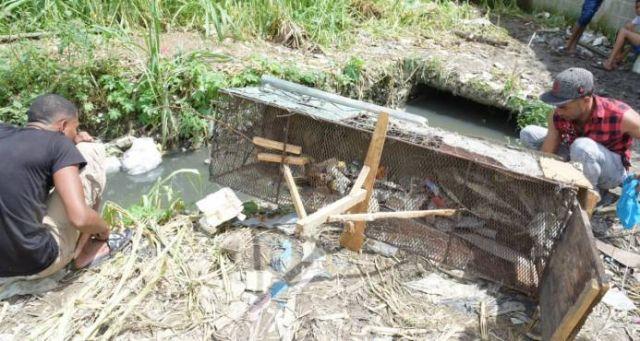 Una trampa para capturar cocodrilo de Sabana Perdida