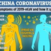 Síntomas y todo lo que necesitas saber sobre el coronavirus