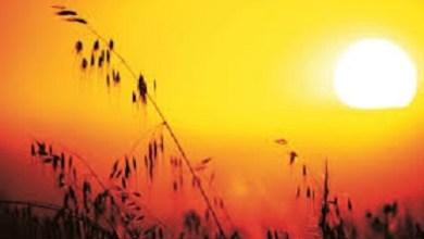 Clima muy cálido para hoy en territorio nacional