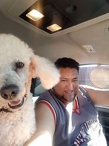 el-presidente-y-su-perro