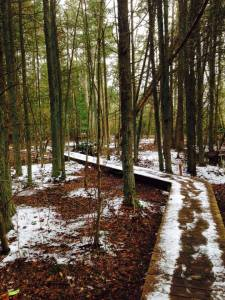 secret trails...