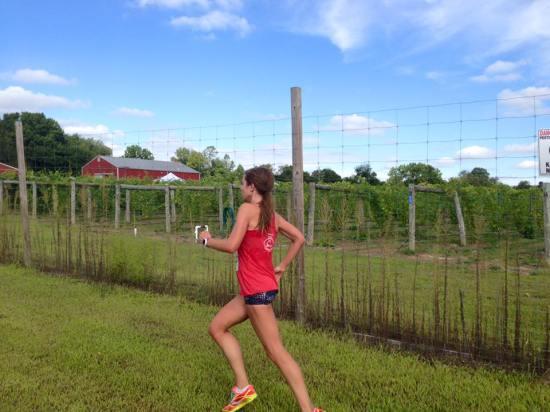 run the vineyards 2