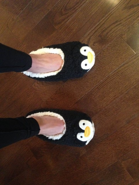 penguin slippers