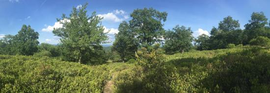 bear mountain state park