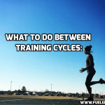 What to Do Between Training Cycles: