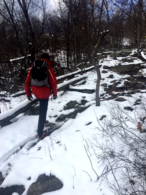 Ramapo State Forest hike