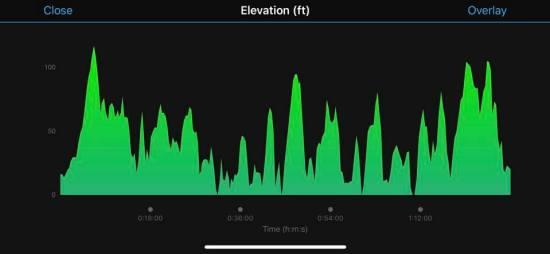 Boothbay harborfest half marathon