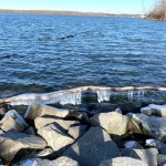 Walking the Manasquan Reservoir