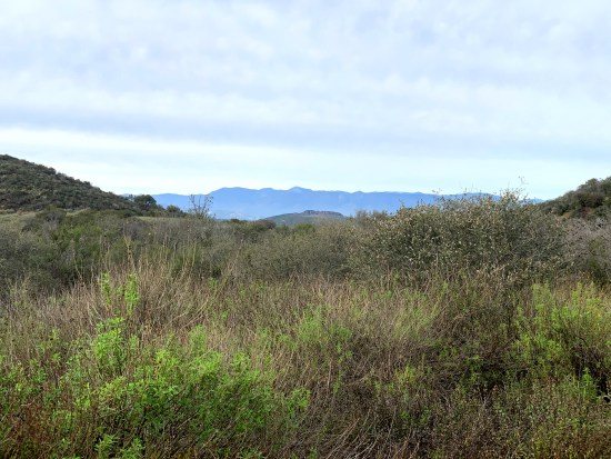 Hiking Los Robles Trail CA
