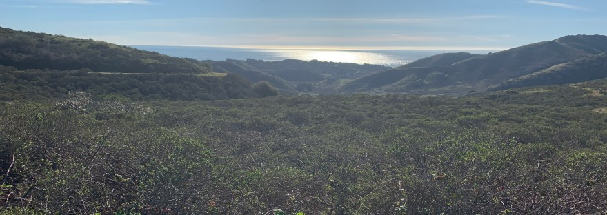 Marin Headlands San Francisco