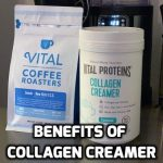 Benefits of Collagen Creamer