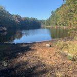 Hiking Pakim Pond in Brendan T. Byrne State Park
