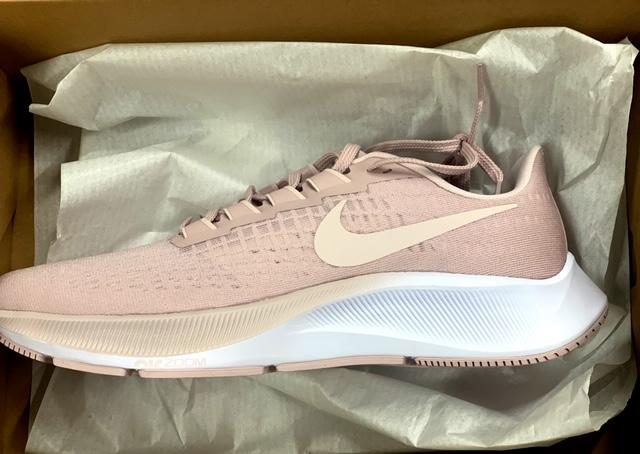 Nike Pegasus 37 Shoe Review