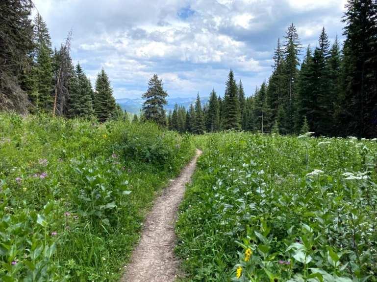 Hiking Cinnamon Mountain (Big Sky, Mt)