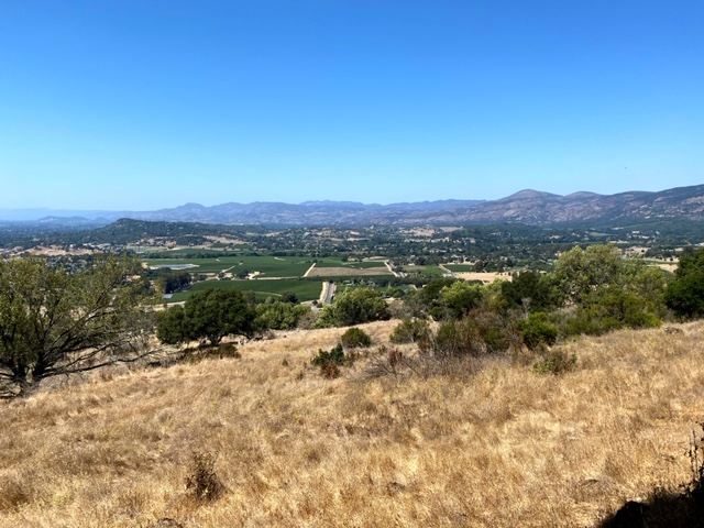 Hiking Skyline Trail at the Skyline Wilderness Park (Napa, Ca)