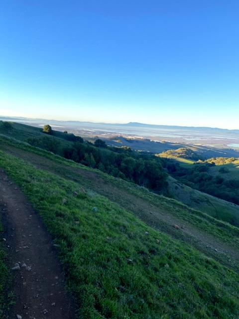 Running the Napa Solano Ridge Trail (Napa)