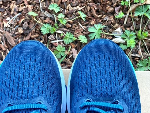Asics Evoride 2 Shoe Review