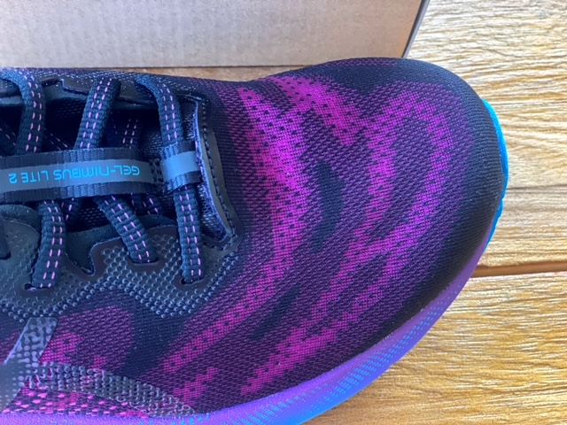 ASICS Nimbus Lite 2 Shoe Review